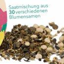 Sommerblumenwiese 100g