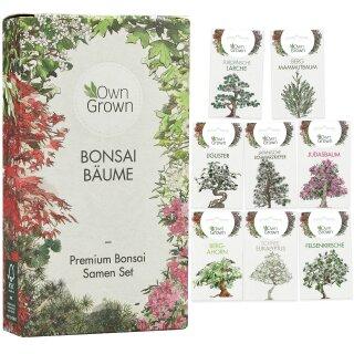 Bonsai Bäume 8er Saatgut-Set